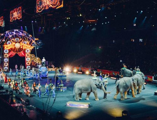 Het Cirques du Soleil